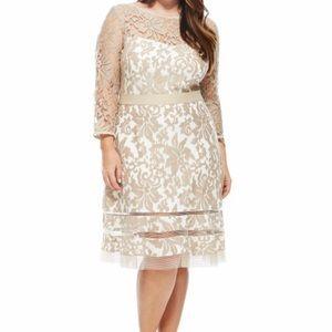 Tadashi Shoji Dresses | Ivory Plus Size Dress Size 20q | Poshmark